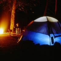 Going Camping this Summer?